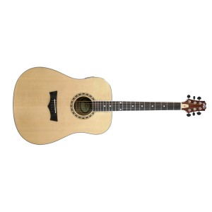 Peavey DW-2 Acoustic NAT