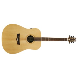 Peavey DW-3 Acoustic NAT